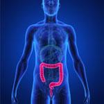 CCPプログラム (腸内クリーンプログラム) イメージ