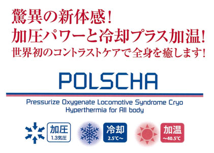 POLSCHAロゴ