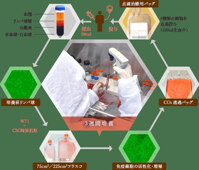 採血と点滴による治療 イメージ